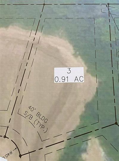 130 CROWN VISTA CV, Piperton, TN 38017 - Photo 1