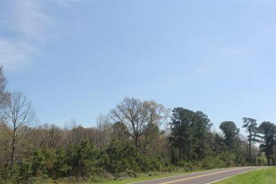 35 OLD HIGHWAY 7 S, HOLLY SPRINGS, MS 38635 - Photo 1