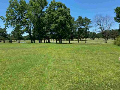 0 HWY 59 HWY, Covington, TN 38019 - Photo 1