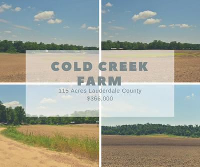COLD CREEK RD, Henning, TN 38041 - Photo 1