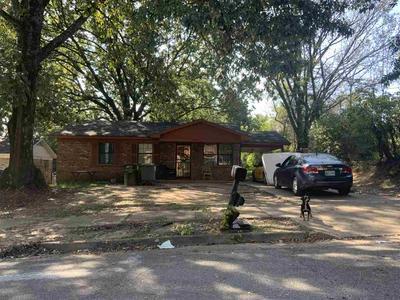 3525 WILLARD DR, Memphis, TN 38118 - Photo 1