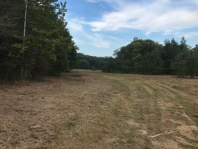 1595 UNION SPRINGS RD, Whiteville, TN 38075 - Photo 1