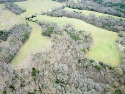 50 OLD JACKSON RD, Whiteville, TN 38075 - Photo 2