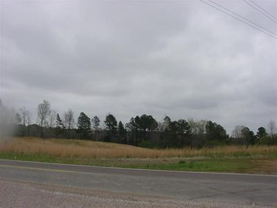 10985 HIGHWAY 57, Counce, TN 38326 - Photo 1