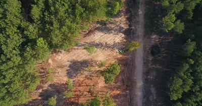 SEAGO RD RD, Iuka, MS 38852 - Photo 2