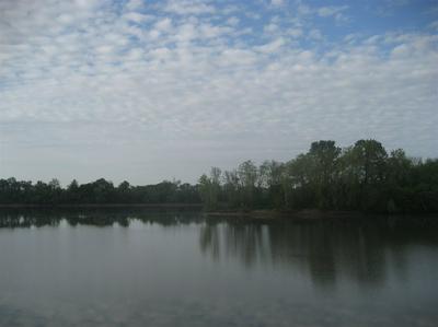1 CATFISH LN, Crump, TN 38327 - Photo 1