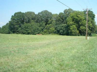 0 YOUNG RD, Bolivar, TN 38008 - Photo 2