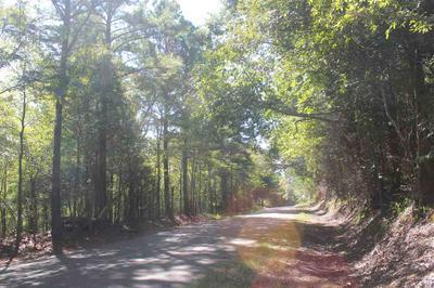 114 BROWNLEE RD, Sarah, MS 38665 - Photo 2