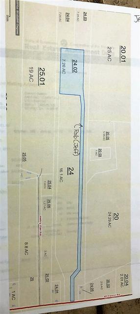 MT CARMEL RD, Unincorporated, TN 38019 - Photo 2