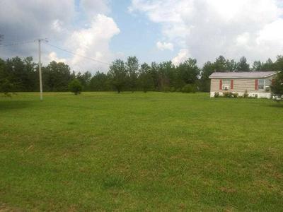 510 BETHLEHEM RD, Adamsville, TN 38310 - Photo 2