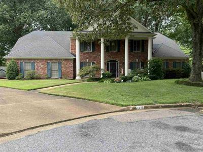 7425 MEADOW RISE CV, Memphis, TN 38119 - Photo 1