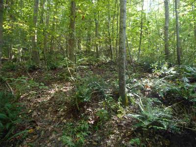 0 CLIFTON RD, Savannah, TN 38372 - Photo 2