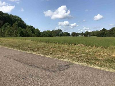 OAK GROVE RD, Savannah, TN 38372 - Photo 2