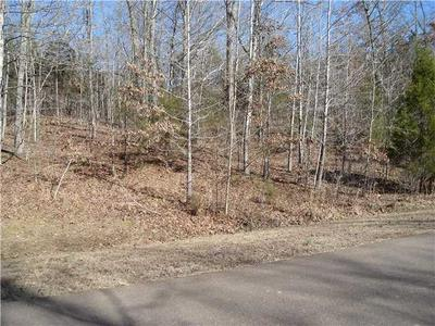 LOT 957 GRAND VALLEY DR, Bolivar, TN 38008 - Photo 2