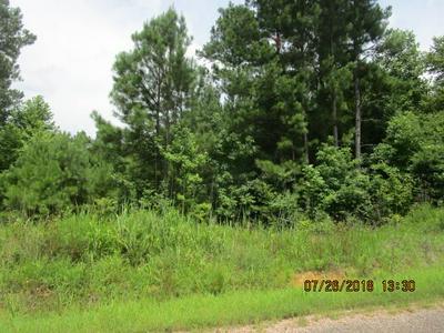 ELZIE POUNDS RD, Selmer, TN 38375 - Photo 1