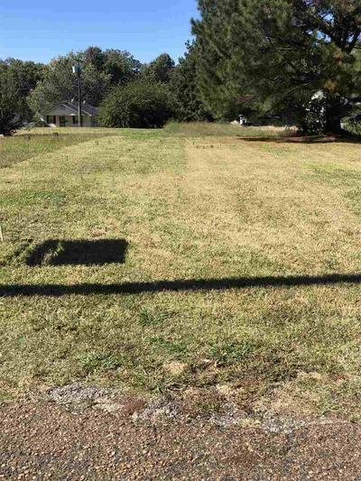 417 HALL ALY, Covington, TN 38019 - Photo 1