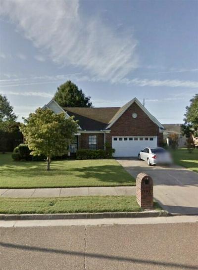 5017 TICKLE VIEW DR, Millington, TN 38053 - Photo 1