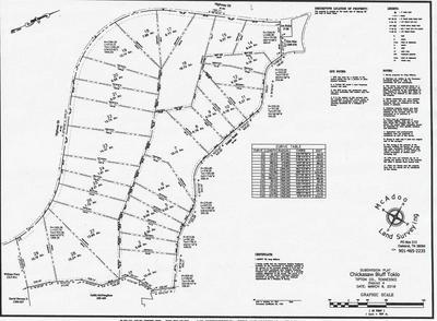 LOT 19 59 HWY, Unicorp/Drummonds, TN 38023 - Photo 2