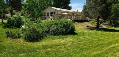 726 BURCHAM FLAT RD, Coleville, CA 96107 - Photo 1
