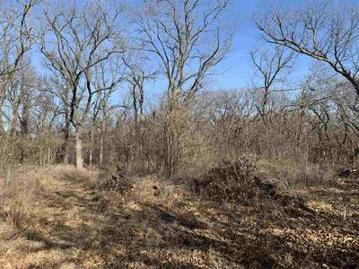 4153 FIRETHORN POINT, Wamego, KS 66547 - Photo 2