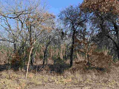 4119 FIRETHORN POINT, Wamego, KS 66547 - Photo 1