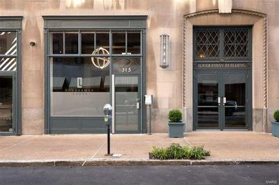 315 N 11TH ST APT 902, St Louis, MO 63101 - Photo 2