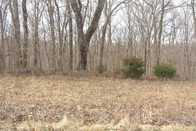 0 LOT 2 TYLER BRANCH ROAD, Perryville, MO 63775 - Photo 2