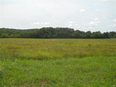 7 TUMBLEWEED, Robertsville, MO 63072 - Photo 1