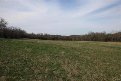 3787 CARTEE RD, Farmington, MO 63640 - Photo 2