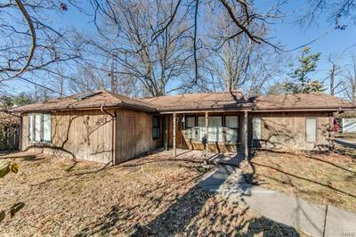 673 WESTCHESTER CT, St Louis, MO 63122 - Photo 1