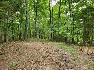 0 10+/- ACRES FOUR WHEEL DRIVE, Marthasville, MO 63357 - Photo 2