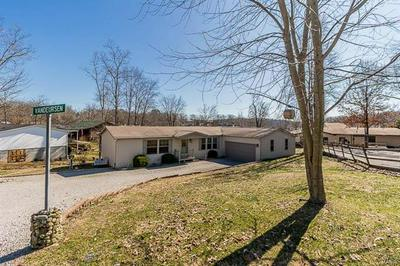 45 BLUE HAVEN PT, CREAL SPRINGS, IL 62922 - Photo 1