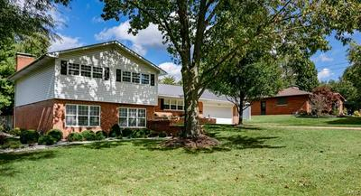 101 AUTUMN LN, Belleville, IL 62223 - Photo 2