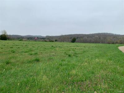 0 HIGHWAY CC, Perryville, MO 63775 - Photo 2