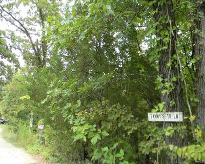 5 .98 ACRES TAMMYS TRAIL, LONEDELL, MO 63060 - Photo 2