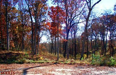 0 LOT #33 BARTON CREEK, Wentzville, MO 63385 - Photo 2