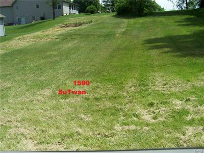 1590 SU TWAN DR, Worden, IL 62097 - Photo 1