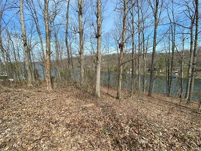 0 LAKEVIEW DRIVE, Perryville, MO 63775 - Photo 2