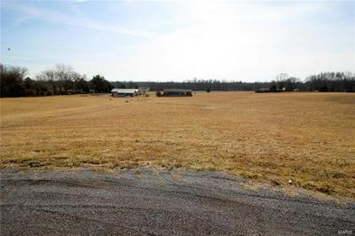 0 ALLYSON # LOT 4, Vienna, IL 62995 - Photo 2