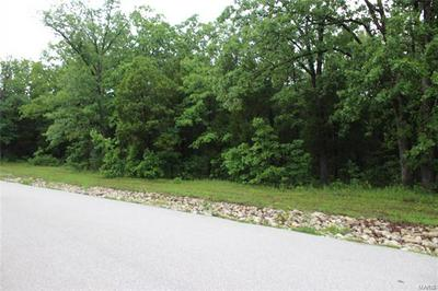 0 CHADWYCK FOREST 2 LOT 7, Dittmer, MO 63023 - Photo 2