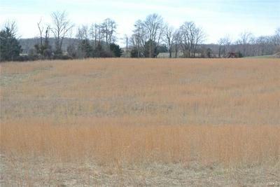 0 LOT 20 OAK FOREST DRIVE, Perryville, MO 63775 - Photo 2