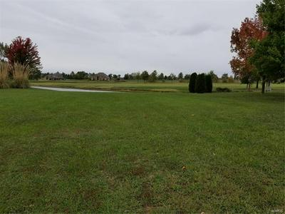 0 SPRING VALLEY DR # LOT #75, Okawville, IL 62271 - Photo 2