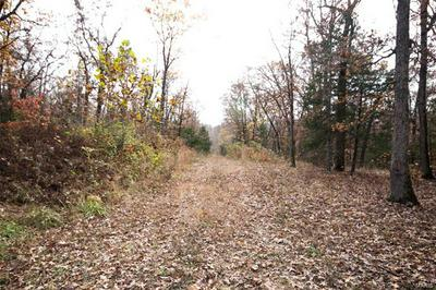 0 70+- ACRES INDIAN BEND ROAD, ROSEBUD, MO 63091 - Photo 2