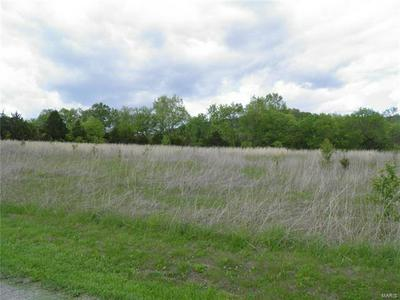 0 LOT 10 OF DRY FORK MEADOWS, Imperial, MO 63052 - Photo 2