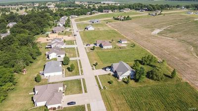 46 HICKORY HOLLOW CT, Jerseyville, IL 62052 - Photo 2