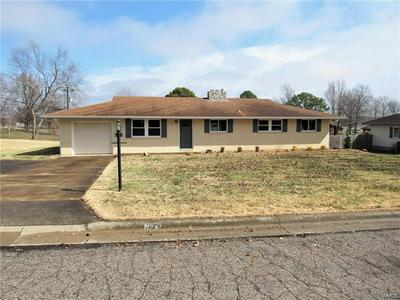 606 N PARKVIEW DR, PERRYVILLE, MO 63775 - Photo 1