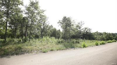 4134 SADDLE RIDGE RD, De Soto, MO 63020 - Photo 1