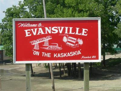 0 MAIN STREET, Evansville, IL 62242 - Photo 2