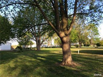 309 S GRACE ST, Marissa, IL 62257 - Photo 1