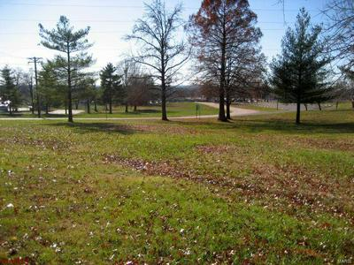 9516 HIGHWAY 100, NEW HAVEN, MO 63068 - Photo 1